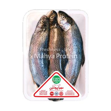 تصویر از ماهی قزل آلا شکم خالی تازه مهیا پروتئین - 1 کیلوگرمی